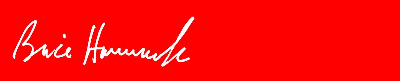 BriceHammack.com